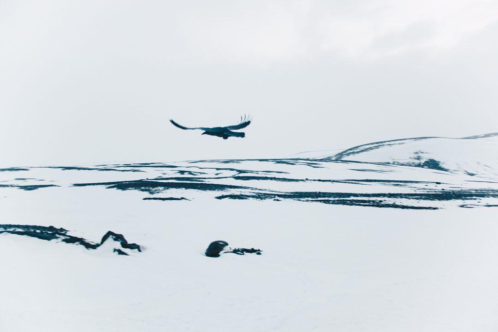 Langjokull Glacier Iceland