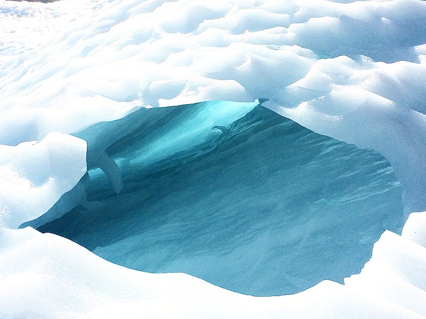 Fox Glacier Heli Hike South Island New Zealand