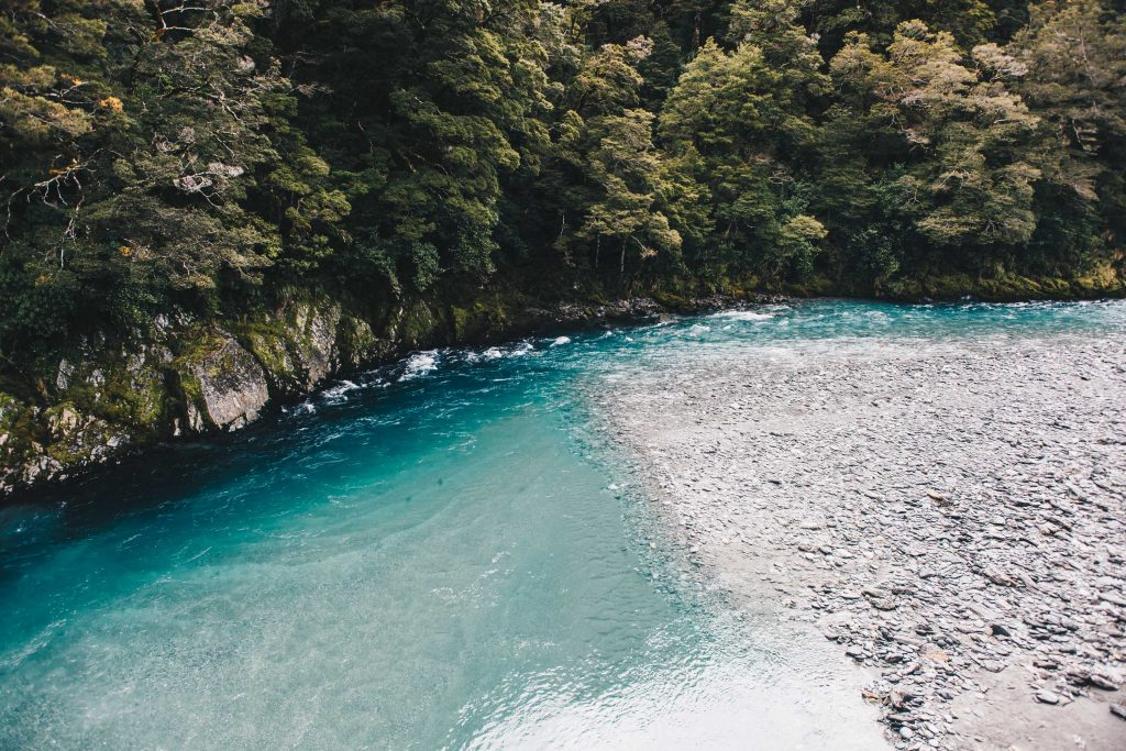 newzealand_travel_blog_pritis_passport-52