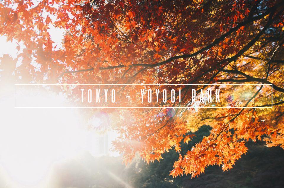 Tokyo – YoYogi Park