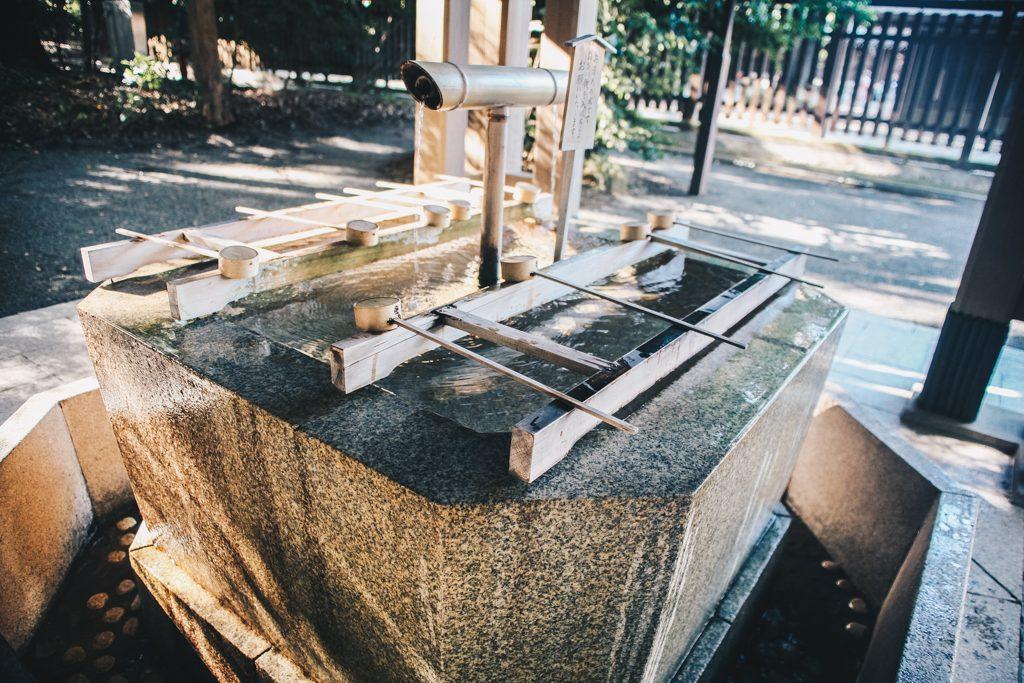 YoYogi Park Meiji Shrine Tokyo Travel Blog